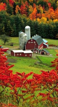 Two of my favorite things, red barns and beautiful fall colors. Beautiful World, Beautiful Places, Beautiful Pictures, Beautiful Farm, Vermont, Country Barns, Country Living, Country Roads, Farm Barn