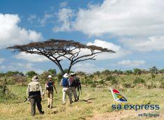 Hiking in Botswana Destinations, Hiking, Walks, Trekking, Travel Destinations, Hill Walking