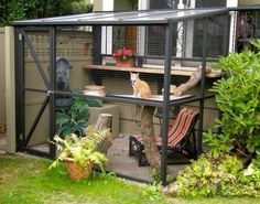 "A catio, an outdoor cat enclosure or ""cat patio,"" is the purrfect solution to solve the indoor/outdoor dilemma and keep your cat safe, healthy and happy. Outdoor Cats, Outdoor Rooms, Outdoor Living, Cage Chat, Cat Fence, Outdoor Cat Enclosure, Cat House Diy, Cat Run, Diy Patio"