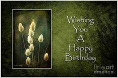Green Birthday Photograph  All prints by Randi Grace Nilsberg can be ordered ready to hang from the portfolio at http://fineartamerica.com/profiles/randi-grace-nilsberg.html?tab=artworkgalleries Prints are available on canvas, metal, acrylic, etc framed or unframed and as greeting cards.   A LIMITED NUMBER OF SIGNED NUMBERED PRINTS CAN BE PURCHASED DIRECTLY FROM THE ARTIST!