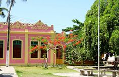 Porto de Pedras Brazil, Fair Grounds, Tropical, Spaces, Mansions, House Styles, Destiny, Manor Houses, Villas