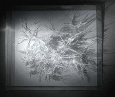 Claudine-Drai-17-Grand-Vefour.jpg (1500×1276)
