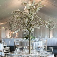White blossom trees are surrounded by candles for a stunning wedding table centrepiece in the Pavilion at this North West wedding venue Tree Centrepiece Wedding, White Wedding Decorations, Candle Wedding Centerpieces, White Wedding Receptions, Centrepiece Ideas, White Weddings, Wedding Ideas, Wedding White, Wedding Set