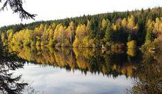 Bärnkopf, Niederösterreich Landscape Photography, Mountains, Nature, Travel, Water Pond, Naturaleza, Viajes, Scenery Photography, Landscape Photos