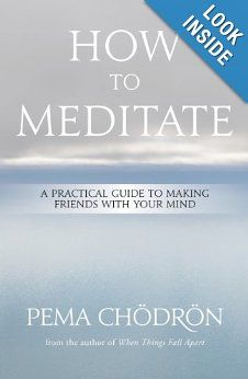 Amazon.com: How to Meditate: A Practical Guide to Making Friends with Your Mind (9781604079333): Pema Chödrön: Books