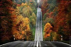 bippity boppity boo (road,hill,autmn,autumn,fall)