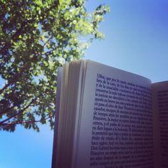 Mi plan para hoy: piscina cielo azul un buen libro y la mejor compañía. #planconniños #piscina #vacaciones #yanohaycole