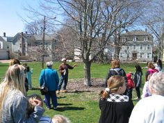 https://flic.kr/p/sckxYX | Celebrating Trees 2015 | Kids learned all about trees during the tree walk provided by the Newport Tree Society.  April 2015.