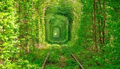 paisajes de amor eterno imagenes hermosas fotos enamorados fondos wallpaper tunel del amor ucrania