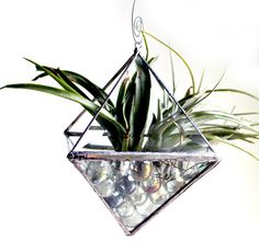 3D Stained Glass Beveled Air Plant Holder. Starting at $1 on Tophatter.com!