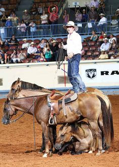 Guy McLean, 2012 International Road to the Horse champion, wowed the crowd at Oklahoma State Fair Park on July I'm so proud to be an Oklahoman! All The Pretty Horses, Beautiful Horses, Trick Riding, Rodeo Cowboys, Cowboy Horse, Western Riding, Natural Horsemanship, Charro, Bull Riders