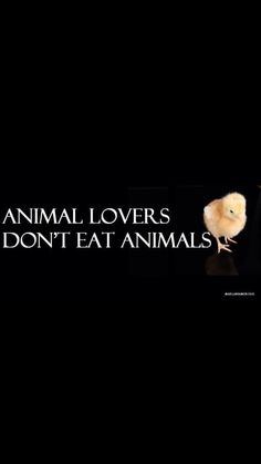 You can't pick which animals you love and say you love them all. I'm sorry, but you cant!