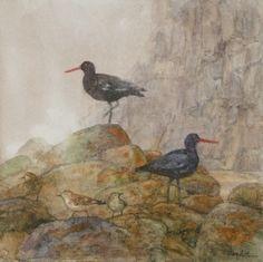 """Oystercatchers and Shorebirds"" by Floy Zittin"