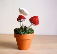 Potted Funghi