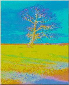 """'Stoffdesign """"Laubbaum im Herbst""""' von Rudolf Büttner bei artflakes.com als Poster oder Kunstdruck $18.02"""
