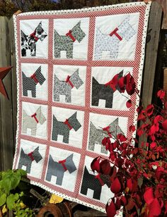 "November 12 - Featured Quilts on 24 Blocks - 24 Blocks Marci Carter: ""Scottie Dog Quilt"" Dog Quilts, Cat Quilt, Animal Quilts, Quilt Baby, Baby Quilt Patterns, Easy Quilts, Small Quilts, Scottish Terrier, Quilting Projects"