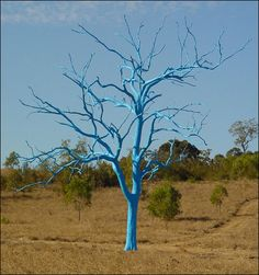 The Blue Tree signifies that even when they die, they continue to be an integral part of the environment... Mount Annan Botanic Garden, NSW, Australia.