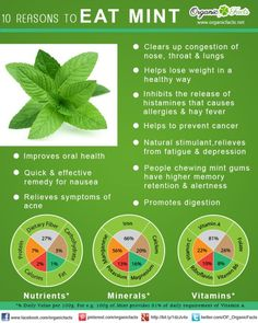 10 Reasons to Eat Mint ~ Need help?  Let's connect!  Email me with a list of your goals and lifestyle to getfit2stayhealthy@gmail.com.   #GetFit2StayHealthy