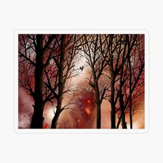 Fine Art Prints, Framed Prints, Canvas Prints, South African Artists, Cool Stickers, Tree Art, Sell Your Art, Flare, Abstract Art