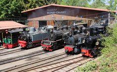 bc-alignement-vapeur-50e BC Alignement de vapeurs de construction Allemande -- Chamby musée -- 11.05.2018 Train Suisse, Trains, Miniature, Construction, Electric Train, Building, Mini Things, Train
