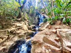 13 best hikes in Johannesburg (and Pretoria) Mountain Bike Trails, Hiking Trails, National Botanical Gardens, Game Lodge, Small Waterfall, Pretoria, Walk In The Woods, John Muir, Best Hikes