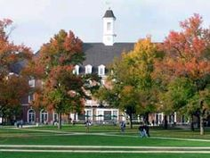 university of illinois at Champagne Urbana - Google Search