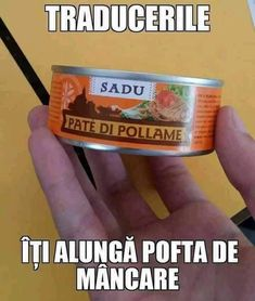 Tu vrei sa fii o rata cand vei fii mare? Best Funny Pictures, Cool Pictures, Funny Quotes, Funny Memes, I Am Awesome, Romania, Funny Things, Solar, Smile