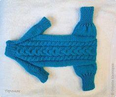 Вязание спицами - Мастер - класс - вяжем комбинезон для собаки