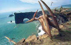 Pteranodon longiceps (pterosaurio del Cretácico, 85MA) (Vlad Konstantinov)