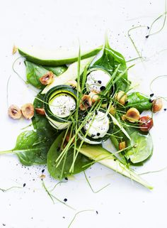 Zucchini Rolls with Whisked Lemon Ricotta, Toasted Hazelnuts and Garlic Cress