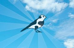 Cowbird is a small community of storytellers creating a public library of human experience. Jonathan Harris, Writer Quotes, Oral History, Telling Stories, Writing Process, Cloud Based, Our World, Cool Websites, Family History