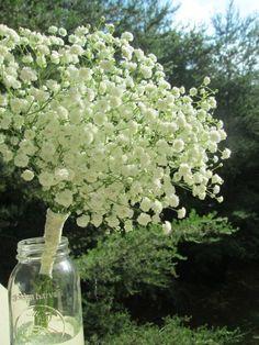 Gypsophilia bouquet tutorial IMG_0545 http://www.weddingbee.com/projects/page/3/#axzz3CGZe9J4Z