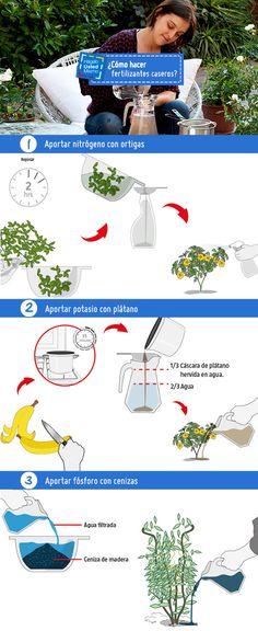 ¿Sabías que con algunos materiales que encuentras en casa puedes hacer tus propios fertilizantes? Entérate de cómo fabricarlos con este #HágaloUstedMismo. #HUM