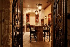 Wine Cellar Photos Wet Bar Design, Pictures, Remodel, Decor and Ideas - page 16