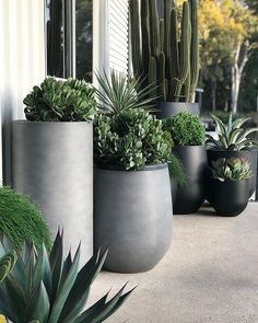 Did someone say garden pots? Another impressive pot cluster by our friends at Balcony Planters, Balcony Garden, Backyard Planters, Wall Planters, Concrete Planters, Outdoor Pots, Outdoor Gardens, Outdoor Potted Plants, Large Outdoor Planters