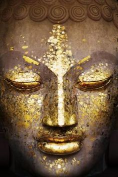 Google Image Result for http://images.worldgallery.co.uk/i/prints/rw/lg/7/3/Maxi-Posters-Buddha---Face-73632.jpg