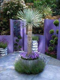 Large sculptural plants and vivid colors create plenty of drama in this fusion-style patio garden.       You Might Also Like... See more of RMSer Ozymndius space. Advertisement