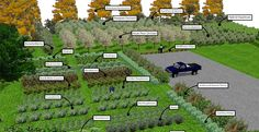 Some interesting edible landscaping and intensive gardening layouts