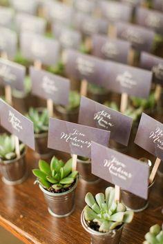 Succulent favors | Katelyn James
