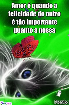 Google+ Leo, Animation, Gifs, Cat Gif, Kitty, Animals, Image, Google, Love Messages