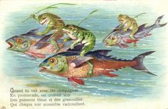 Three Frogs having a Race on the Back of a Fish (1909)
