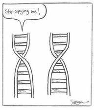 Biology Humor