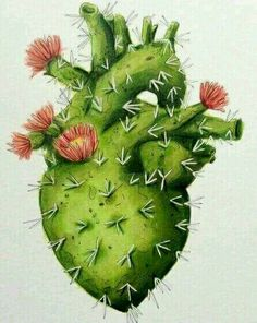 Ideas For Flowers Illustration Cactus Arte Com Grey's Anatomy, Anatomy Art, Cactus Art, Cactus Painting, Heart Painting, Mexican Art, Heart Art, Art Plastique, Art Inspo