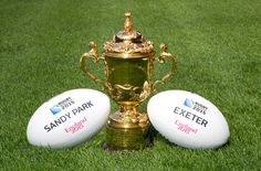 Exeter - Host City for Rugby World Cup Exeter England, Exeter Devon, Rugby World Cup, Christmas Ornaments, Holiday Decor, City, Sports, Hs Sports, Christmas Jewelry