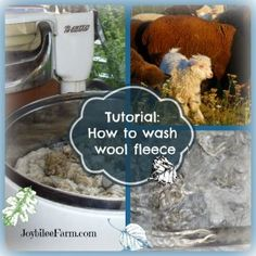 How to wash wool fleece ~Joybilee Farm