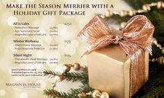 It's beginning to look a lot like Christmas! Are you in search of the perfect present? Carefully created holiday spa packages are available through December We've got you covered. Christmas Is Coming, Christmas And New Year, Christmas Presents, White Christmas, Holiday Gifts, Christmas Holidays, Merry Christmas, Spa Packages, Stone Massage