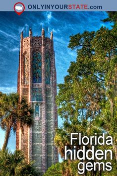 Travel Florida Attractions USA East Coast Hidden Gems Things To Do Day Trips Places To Visit Bucket List Outdoor Adventure Beautiful Places Explore Vacation. Visit Florida, Old Florida, Florida Vacation, Florida Travel, Vacation Places, Florida Beaches, Vacation Spots, Places To Travel, Florida Keys
