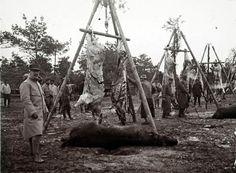 Cuerpos de animales listos para ser cocinados y servir de rancho para los soldados, en el frente de Champagne, en fecha desconocida.