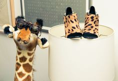 """[If my shoes could talk they would say] let's take an Uber."" http://www.thecoveteur.com/casey-fremont-crowe/"