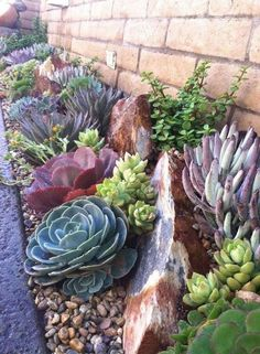 68 Marvelous Rock Garden Ideas Hinterhof Backyard 68 Marvelous Rock Garden You are in the right place about Front Yard flower beds Here we offer you the Low Water Landscaping, Succulent Landscaping, Landscaping With Rocks, Front Yard Landscaping, Succulents Garden, Backyard Landscaping, Landscaping Ideas, Garden Planters, Landscaping Edging